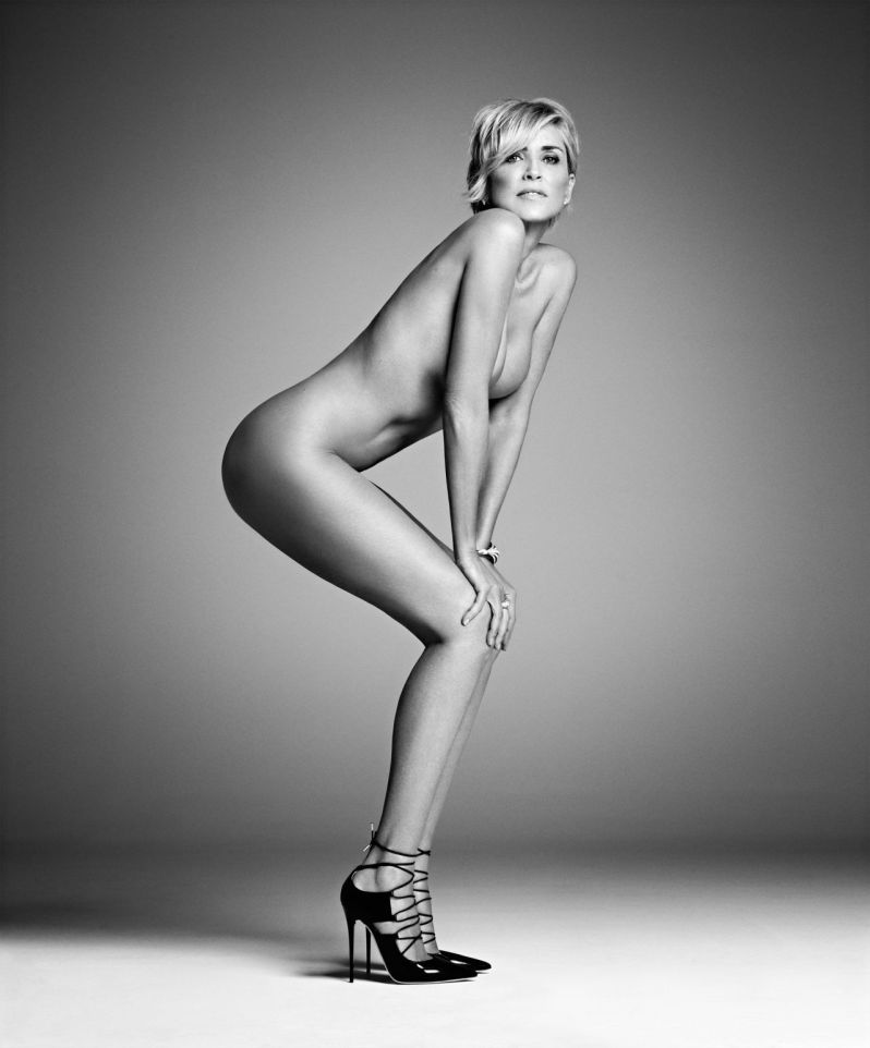 Sharon Stone3