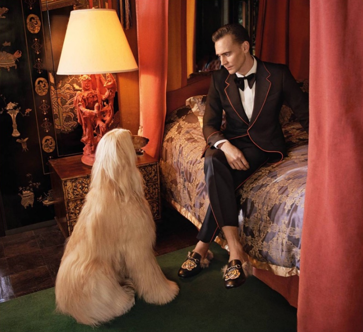 tom-hiddleston-gucci4
