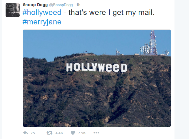 hollyweed2